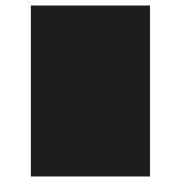 Merthyr Town FC Logo